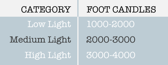 Foot Candle Light Level Chart